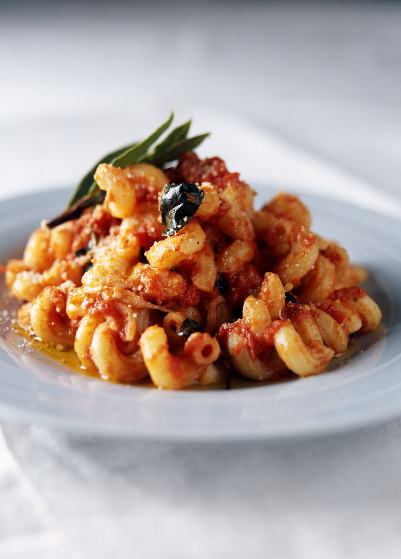 Spiral pasta with tomato,basil and mozzarella sauce