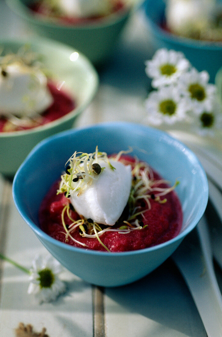 Beetroot mousse,fresh goat's cheese quenelle and alfafa