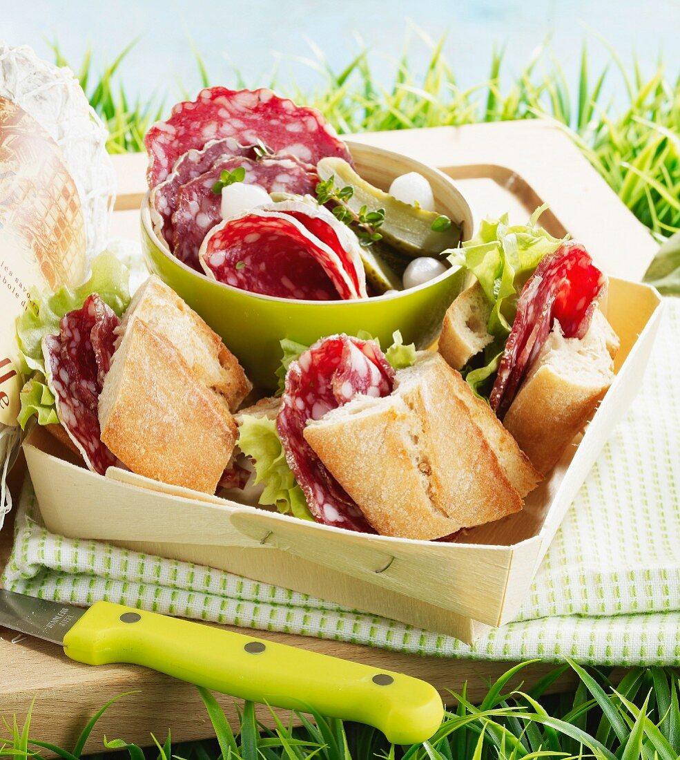 Picnic with dried sausage sandwiches