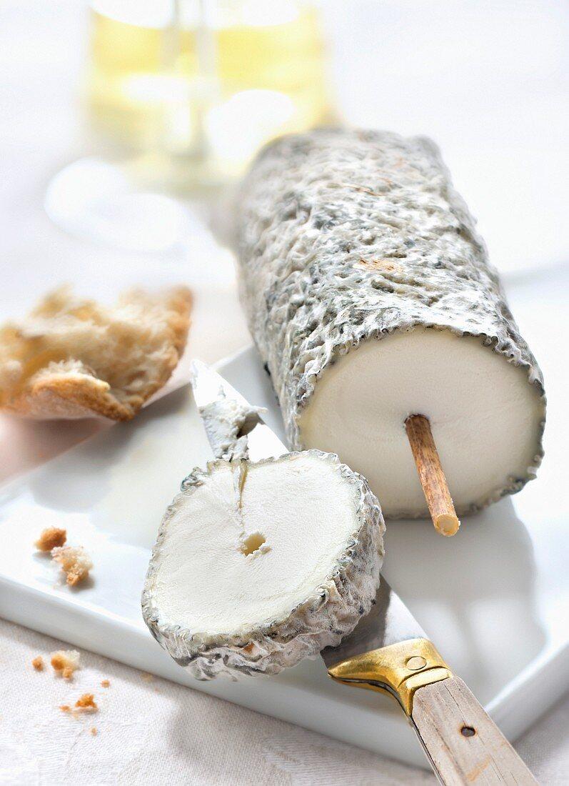 Sainte-Maure de Touraine cheese