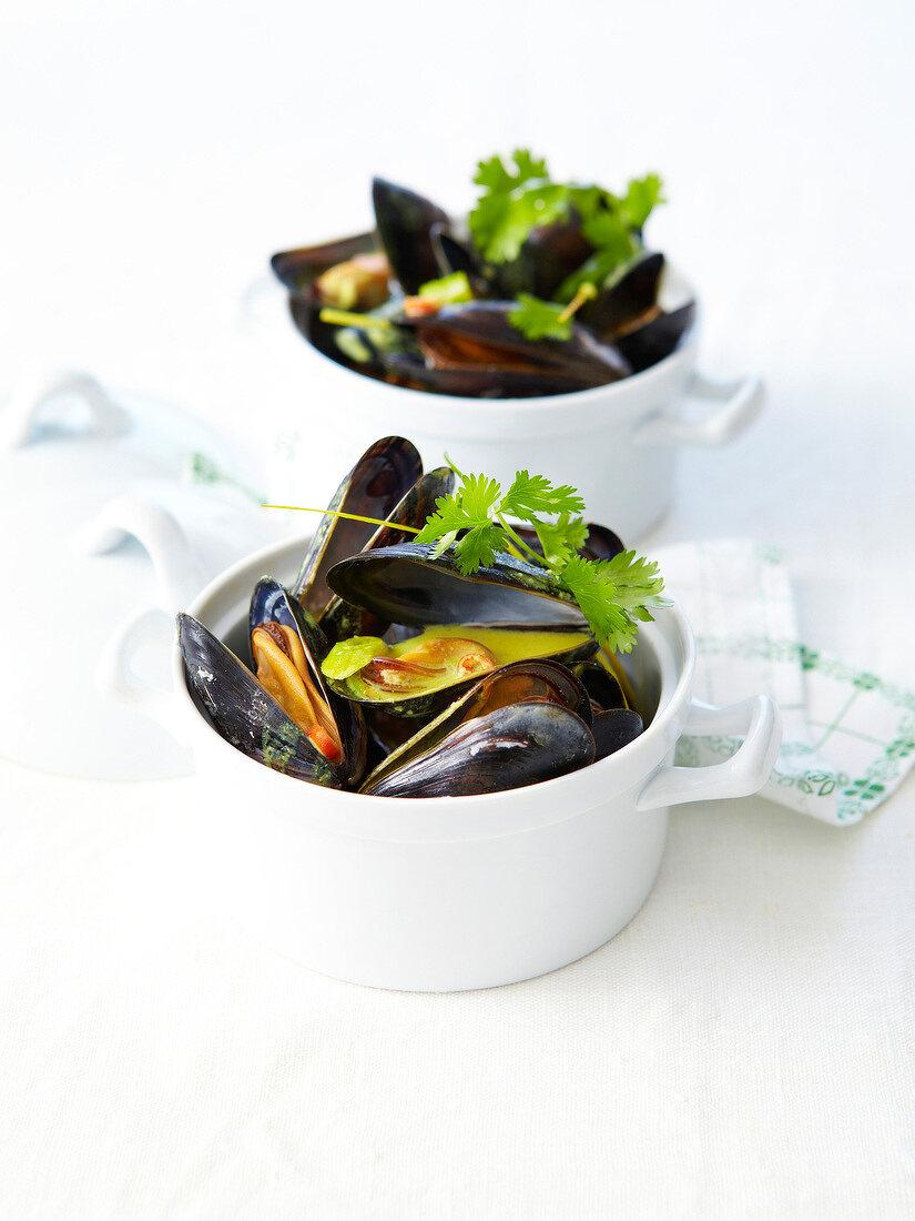 Curried mussel casseroles