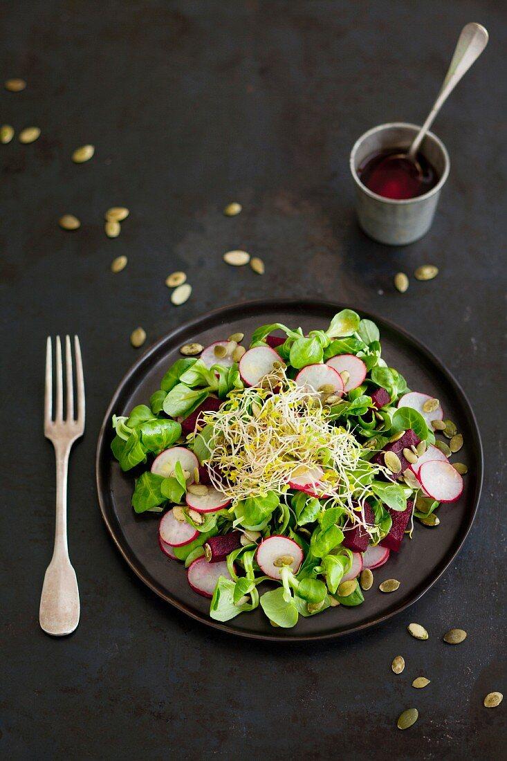 Corn lettuce,radish,beetroot and squash seed salad