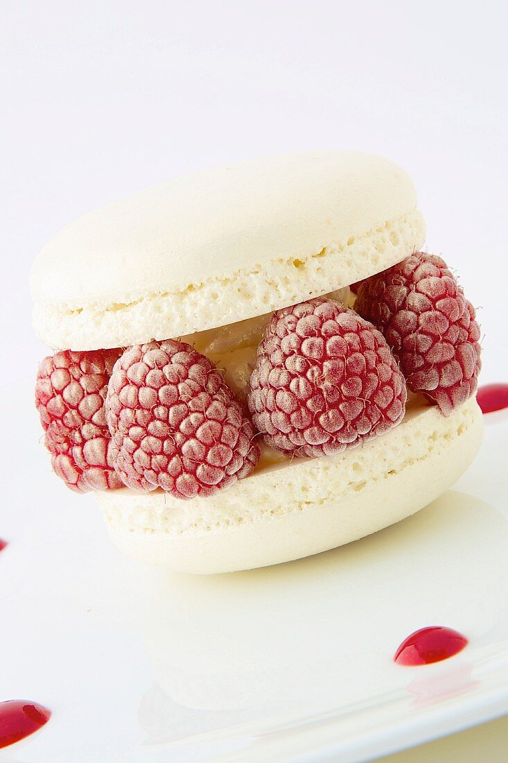 Vanilla and raspberry Macaron