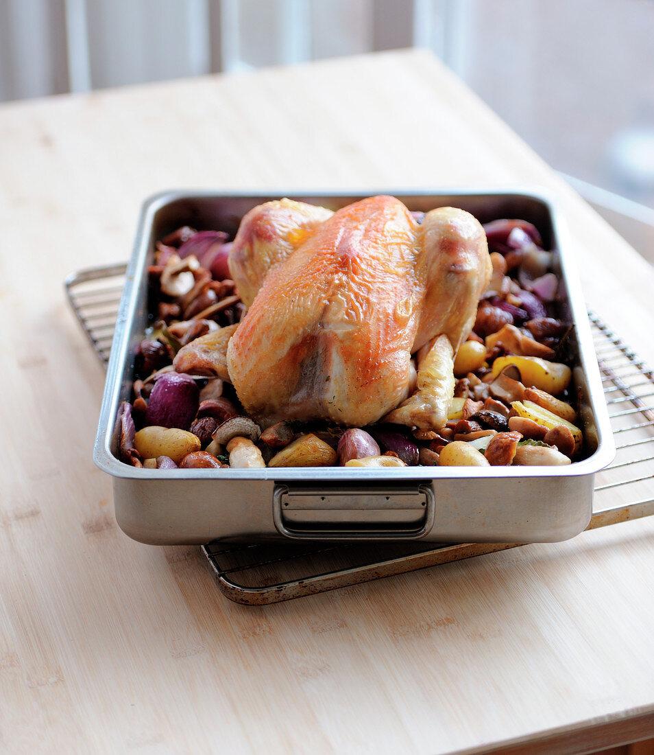 Roast chicken with autumn vegetables