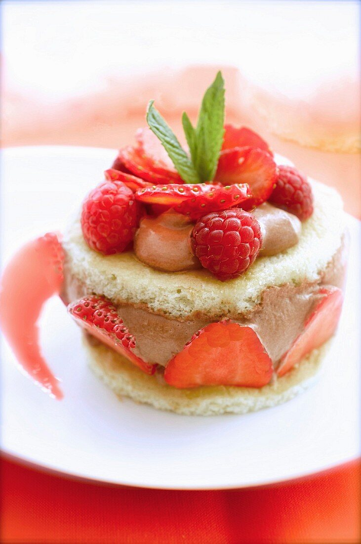 Sponge cake, chocolate mousse and red fruit dessert