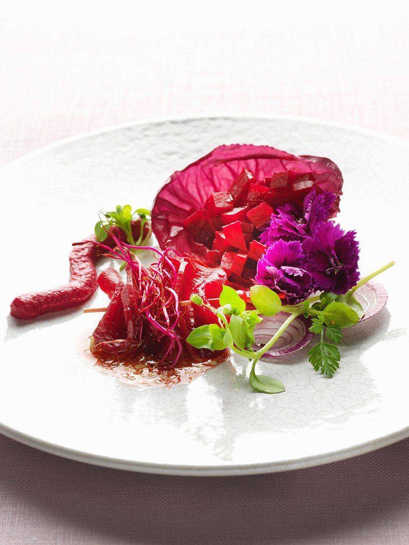Various dishes around beetroot : mousseline, sprouts and beetroot salad