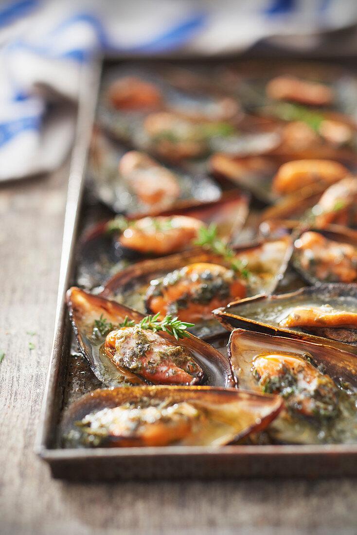 Miesmuscheln vom Grill mit Algenbutter mit Feldthymian und bretonischem Pastis-Anisschnaps