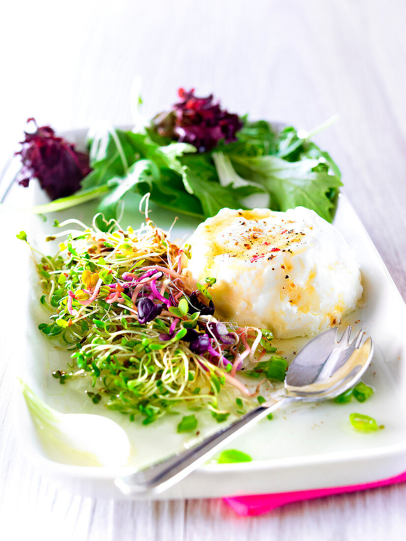Faisselle with spicies and honey,sprout salad