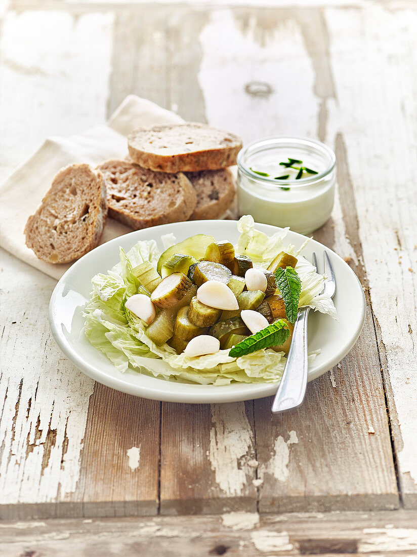 Chinese cabbage,mini cucumber,garlic and mint salad with yoghurt sauce