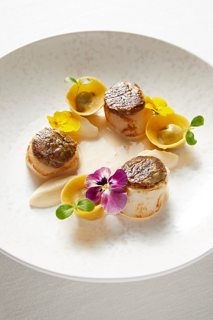 Pan-fried scallops with crisp veal tongue and blood sausage cappelletti,celeriac mash