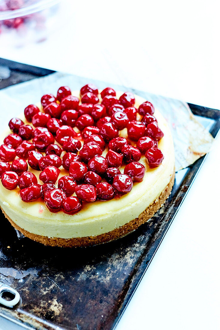Griotte Cherry Cheesecake