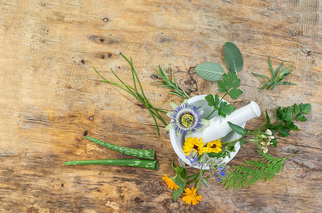 Flowers and healing plants in a mortar for essential oils