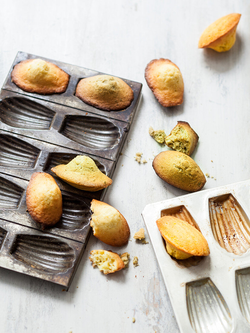 Madeleines of Proust