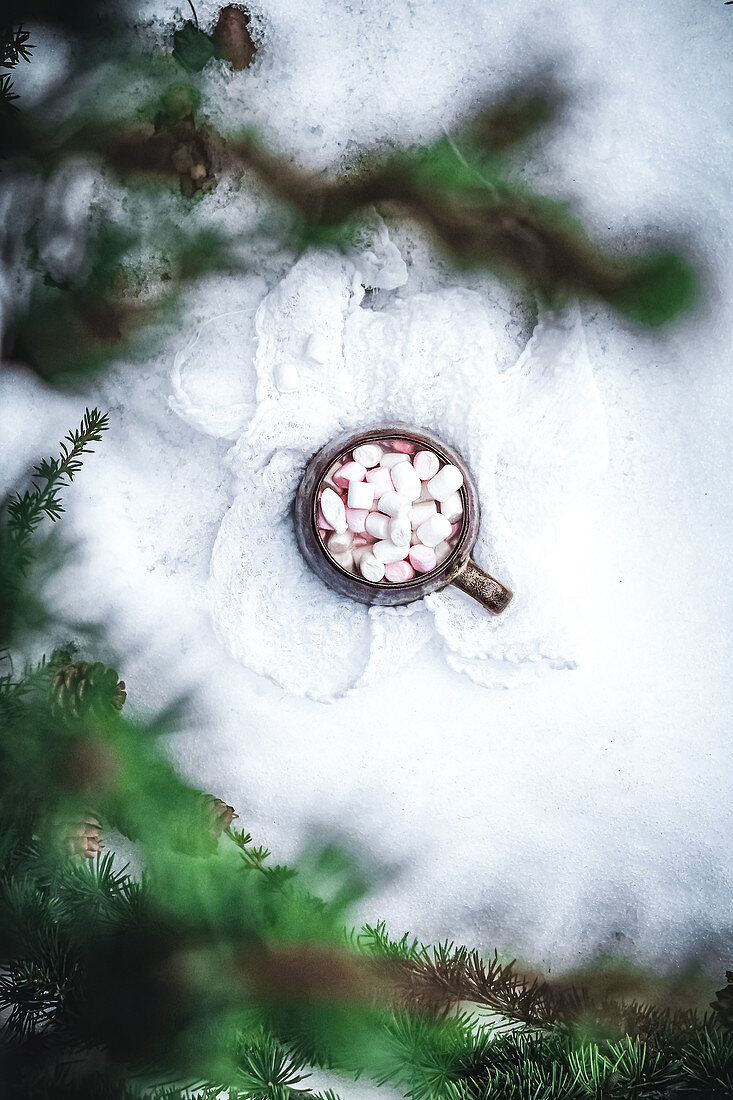 Cup of hot cocoa and marshmallows in the snow
