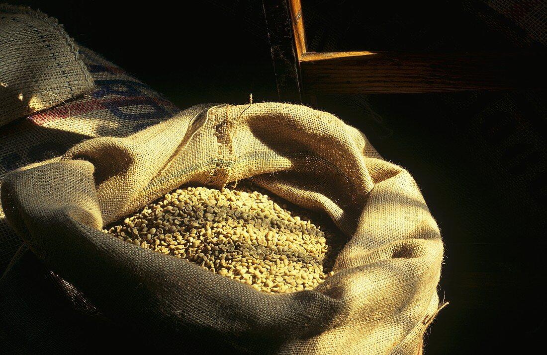 Burlap Sack full of Parchment