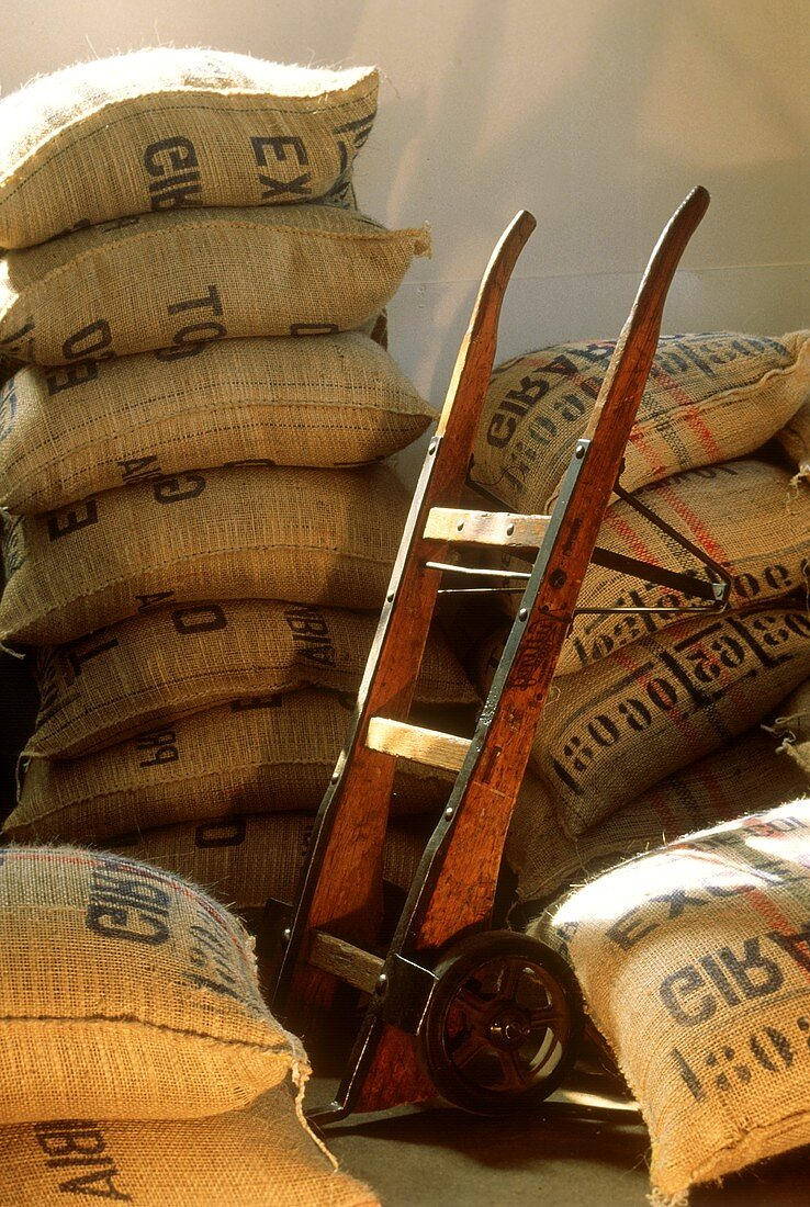Coffee Beans in Burlap Bags in Warehouse