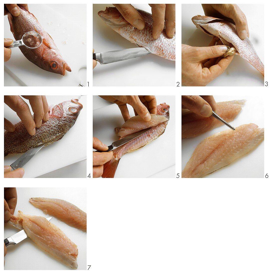 Preparing and filleting round fish