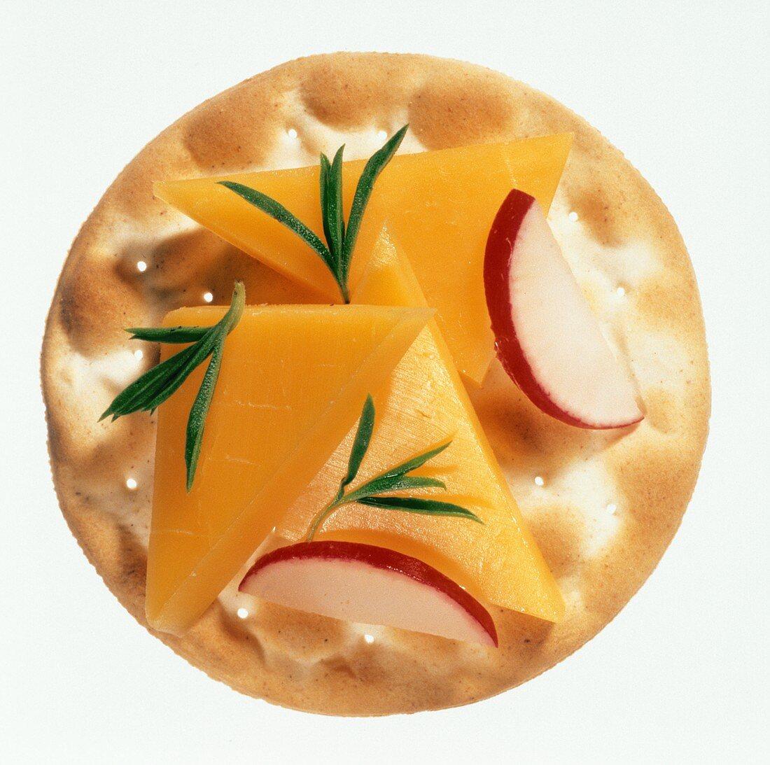 Cracker with Cheese and Radish
