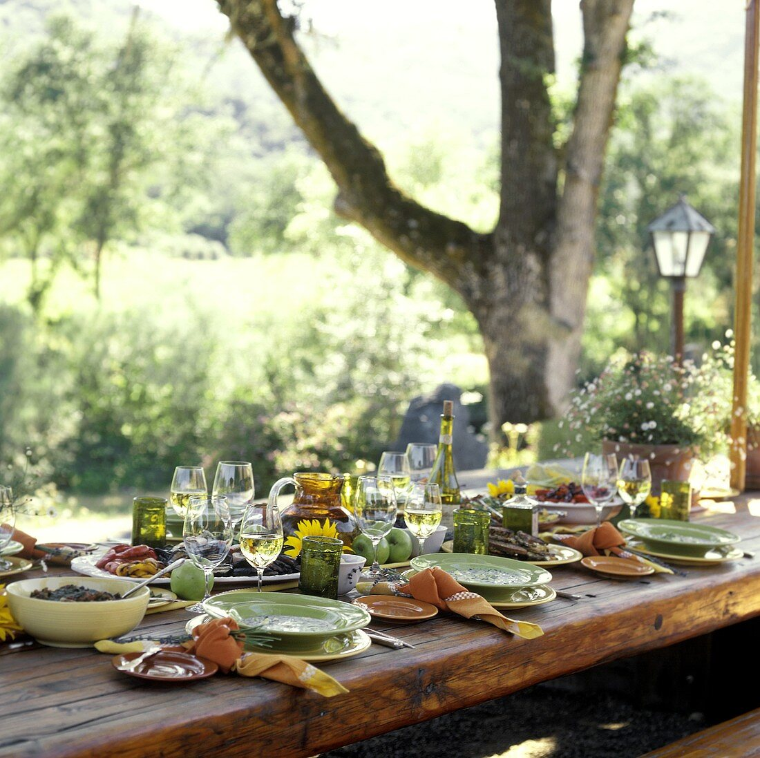 An Outdoor Table Setting with a Vegetarian Meal