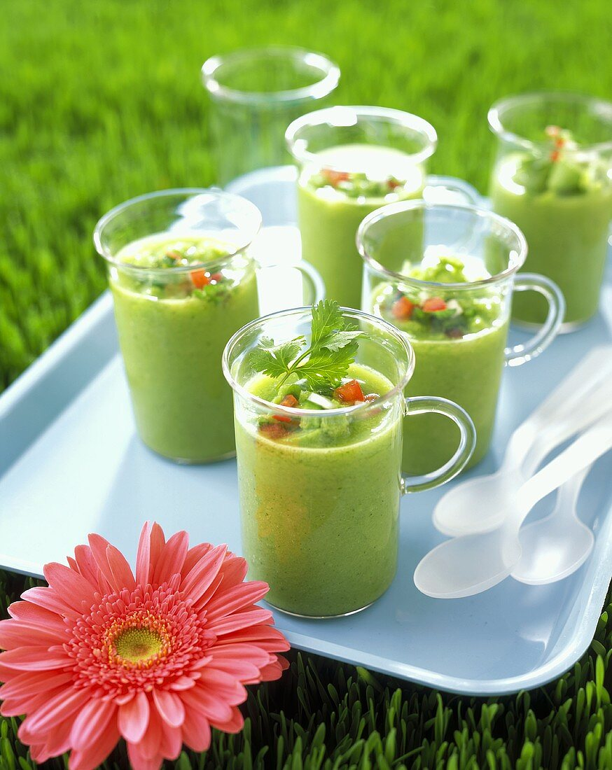 Green Gazpacho in Glasses on a Tray in Grass