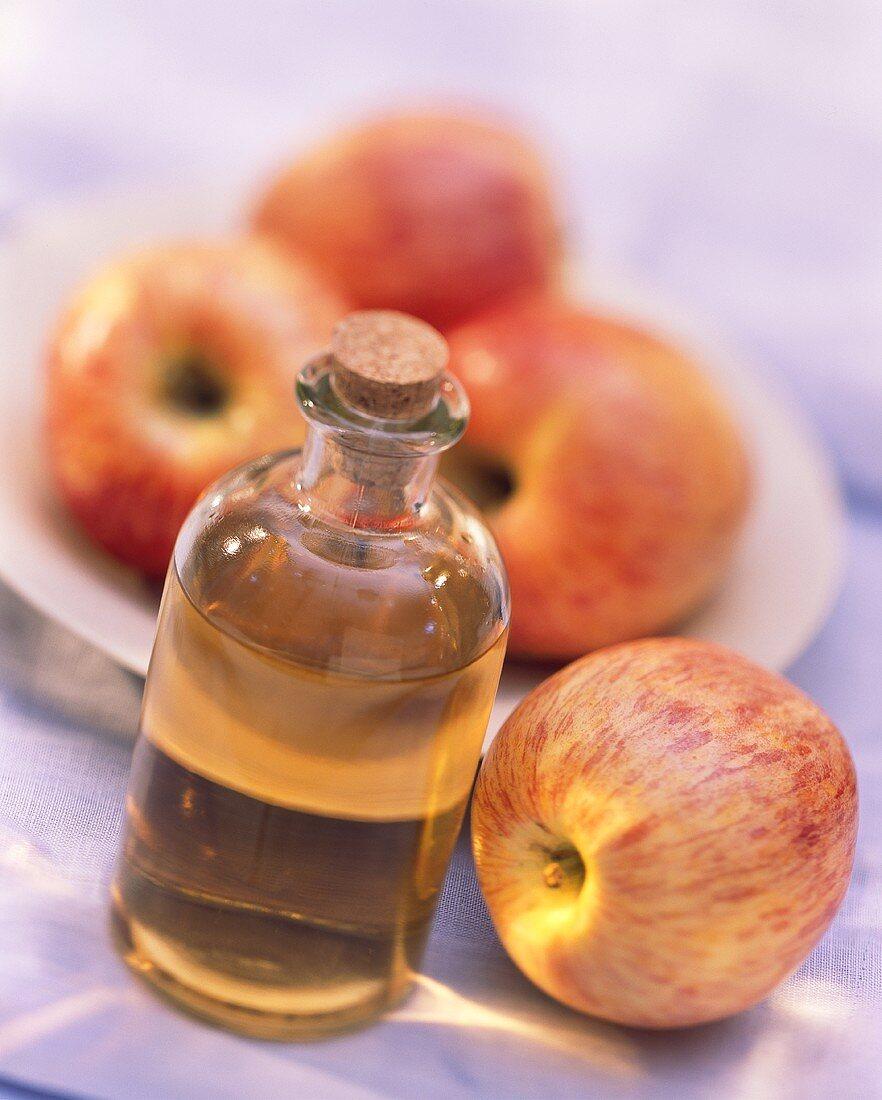Apple Vinegar in a Bottle with Gala Apple