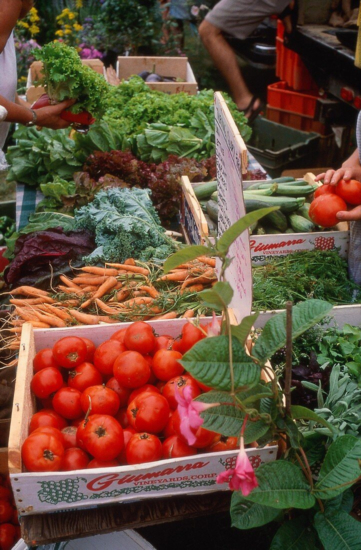 Several Vegetables at the Farmer's Market