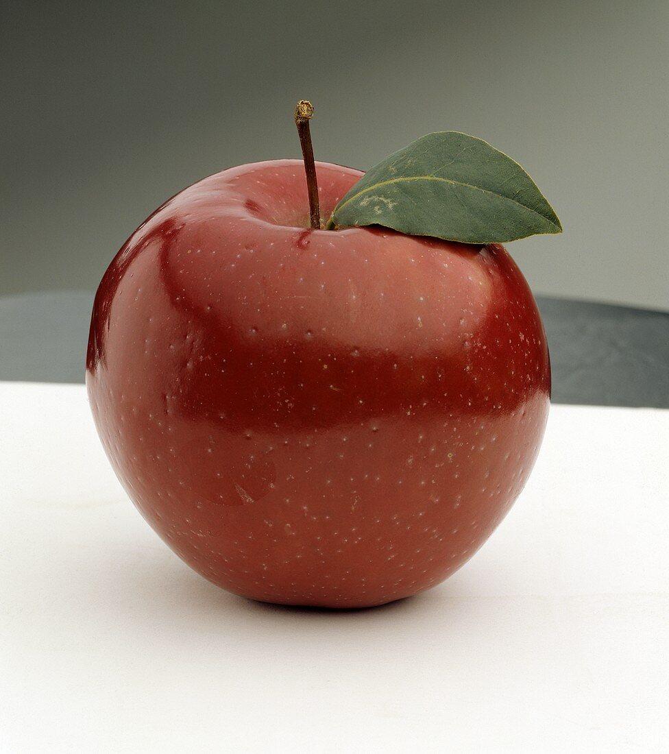 One Rome Apple