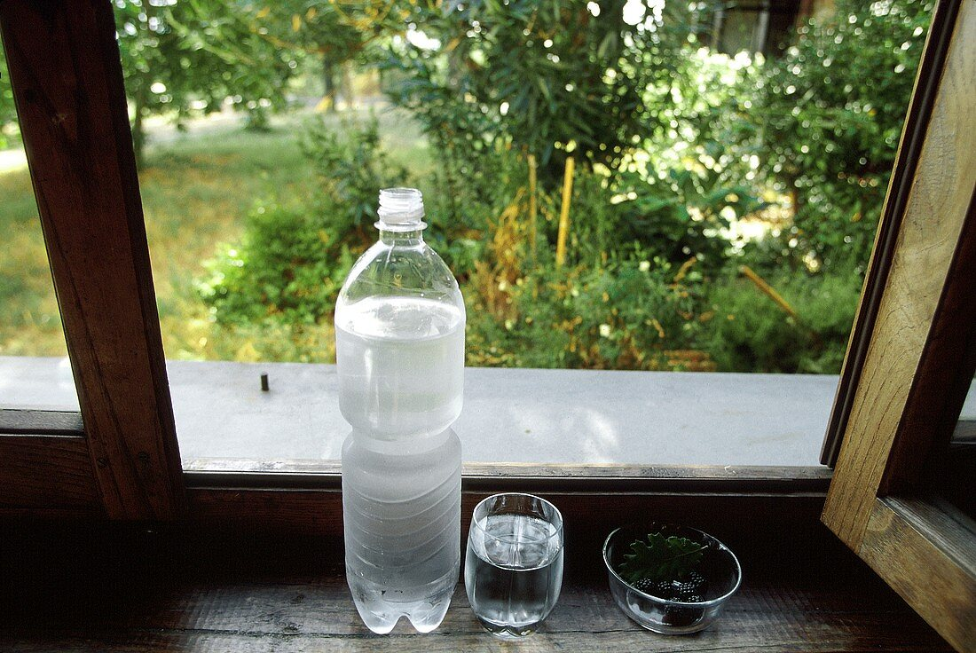 A Bottle of Mineral Water with Glass; Tuscany