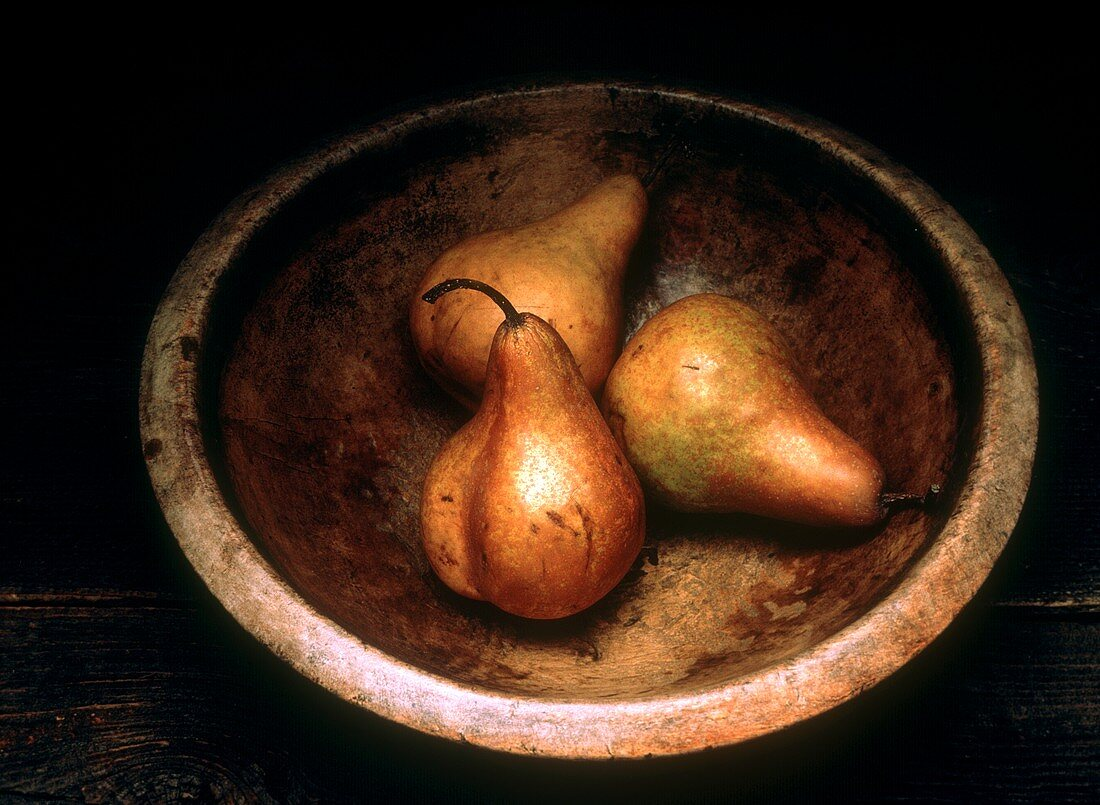 Bosc Pears in a Bowl