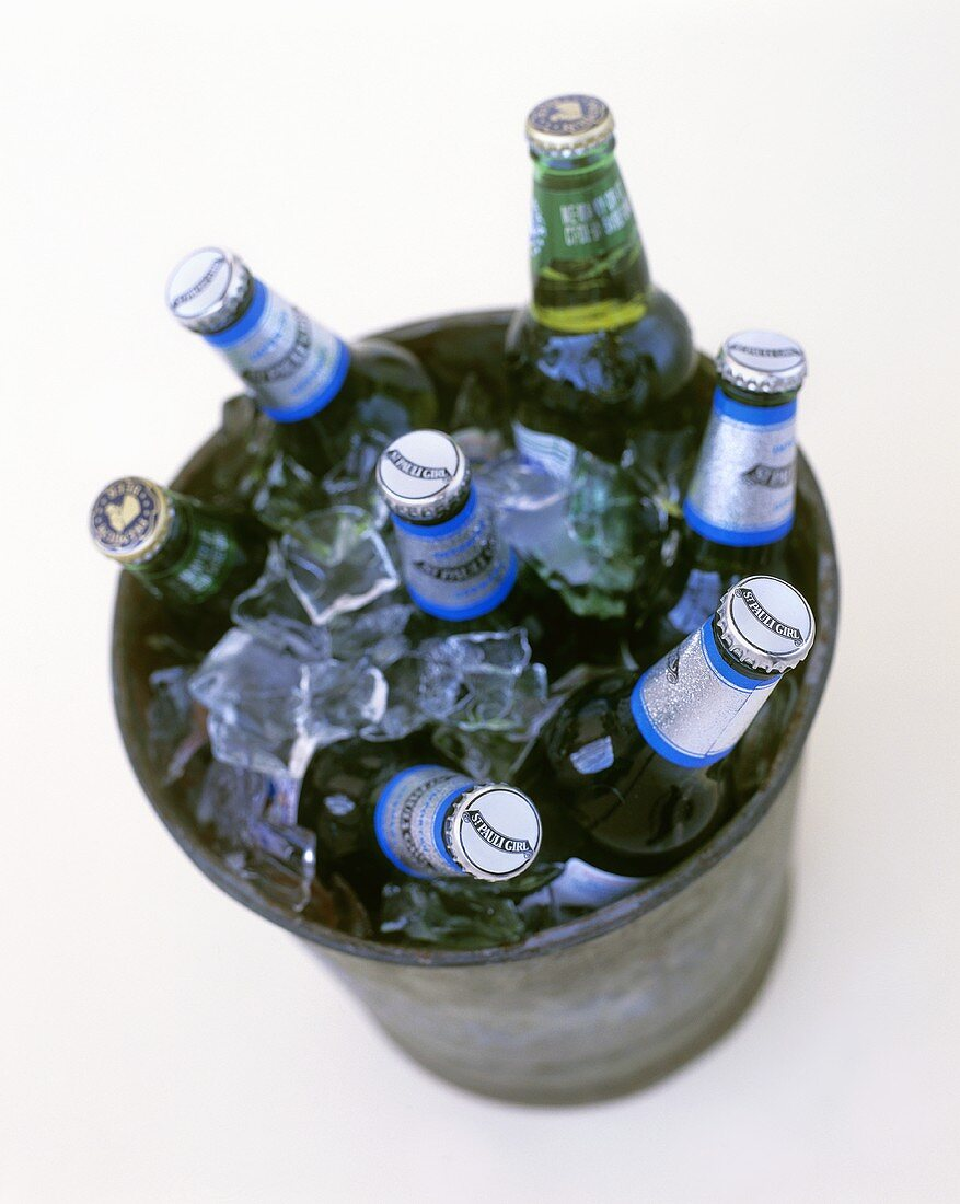 Beer bottles and ice cubes in a bucket