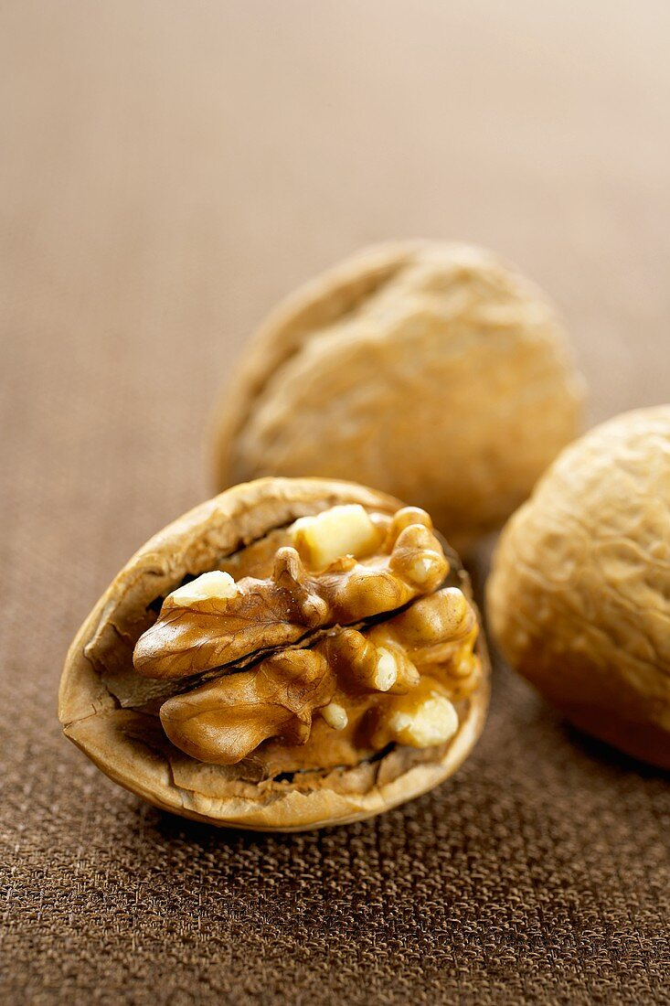 Walnut in the Shell, Two Whole Walnuts