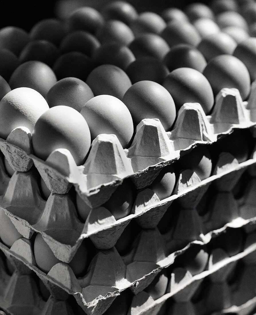 Stacked Egg Cartons with Eggs