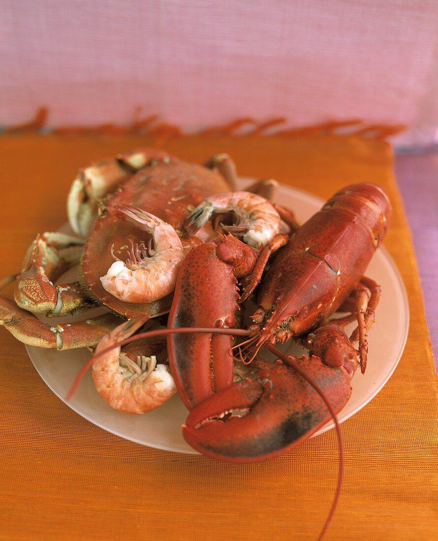 Lobster, Crab and Shrimp