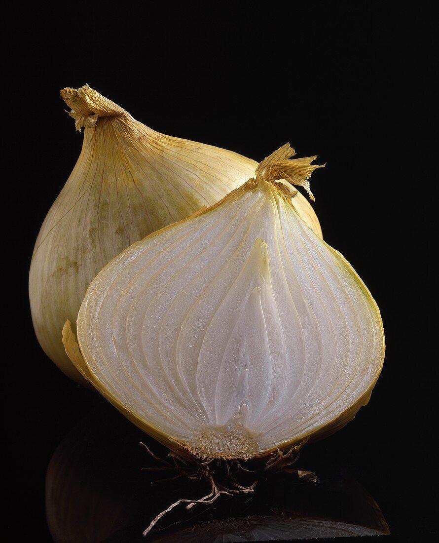 White Onion Cut in Half; Black Background