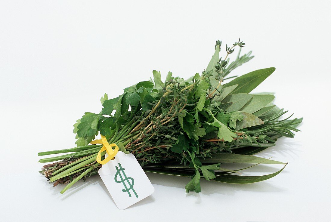 A Bouquet of Fresh Herbs with $ Tag