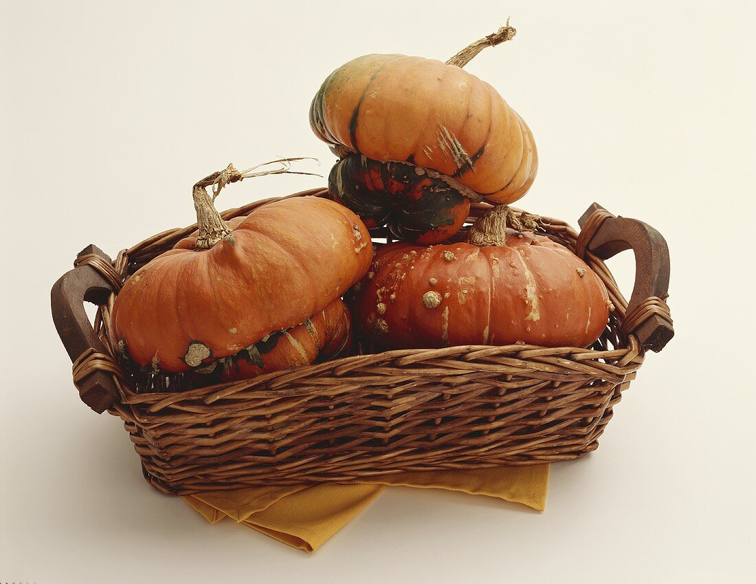Turban Squash in a Basket