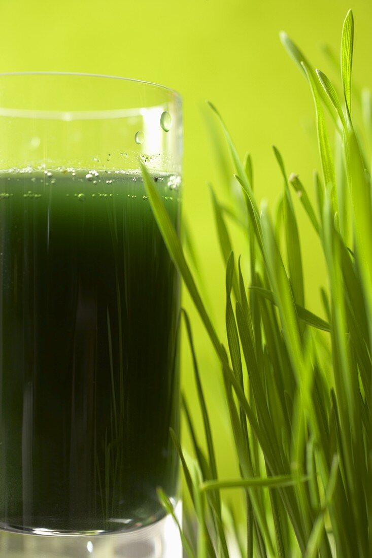 Glass of Wheat Grass Juice with Wheat Grass