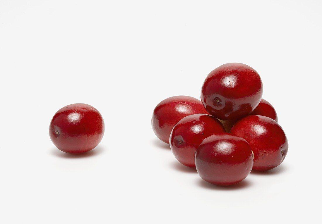Fresh Whole Cranberries