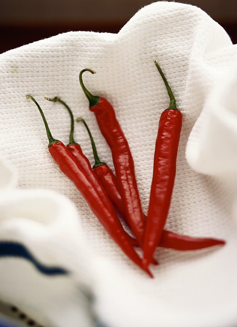 Five red chilis in a white towel