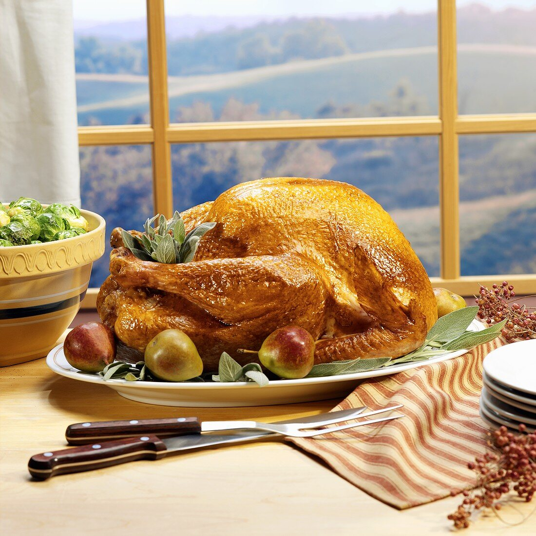 Roast turkey with pears and sage in front of a window