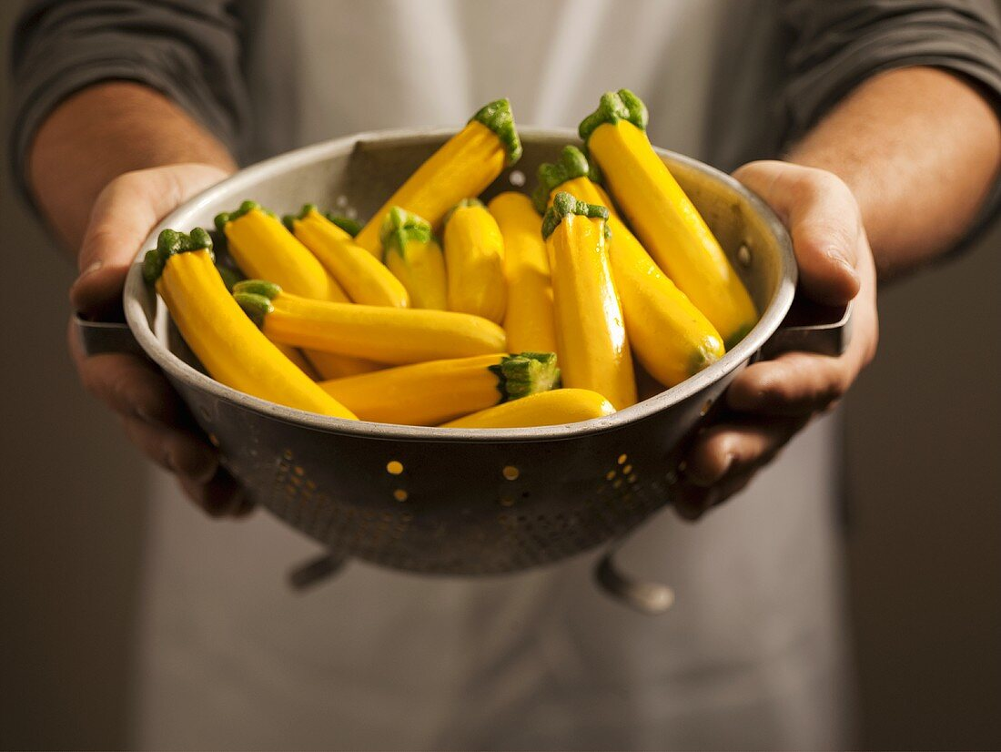 Man Holding a Colander of Baby Yellow Zucchini