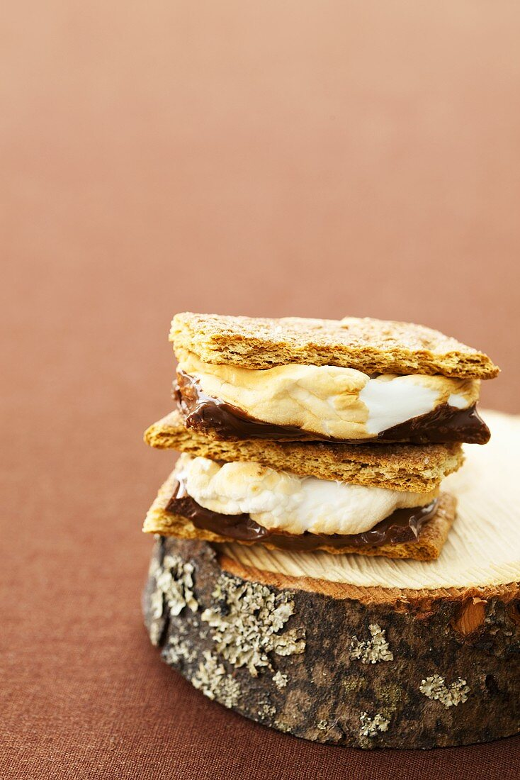 Two S'mores Stacked on a Piece of Wood