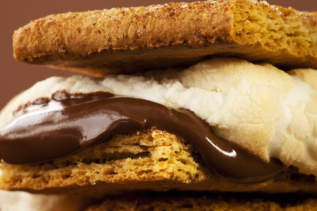 S'more; Close Up