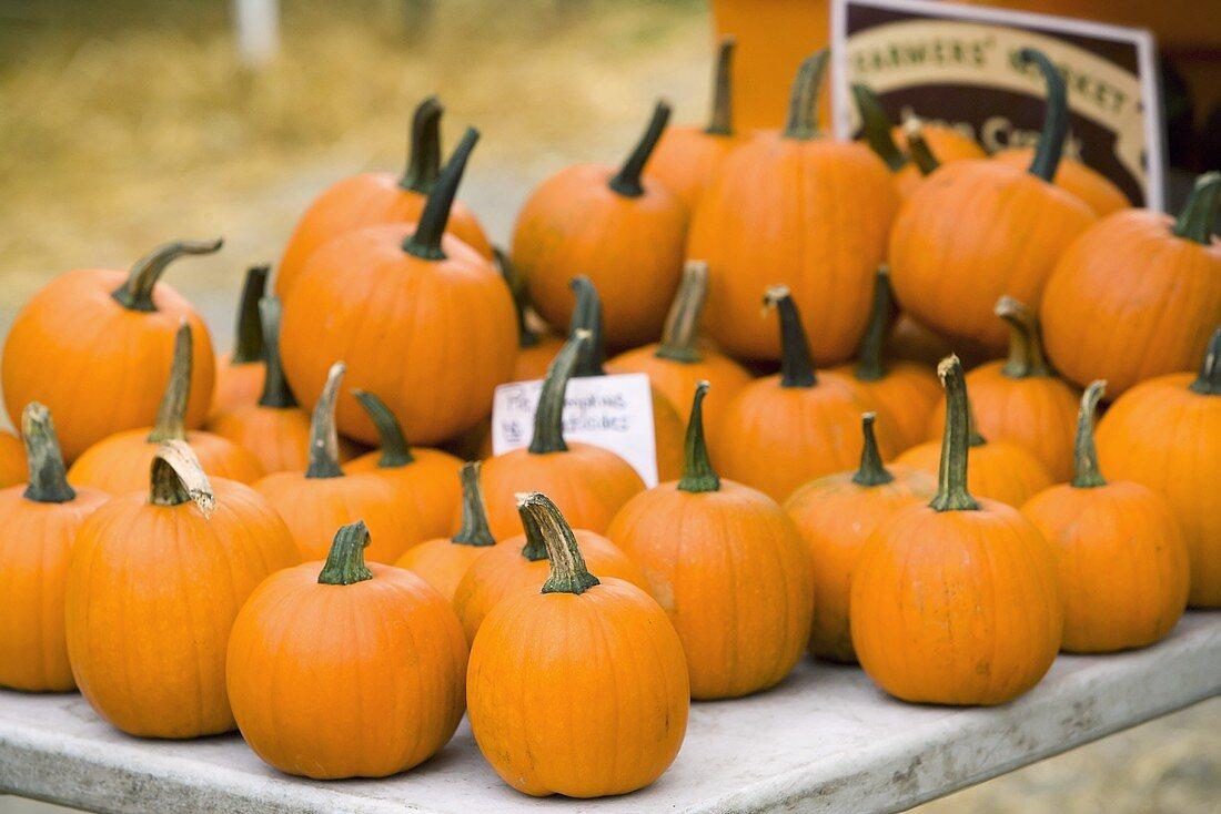 Organic Pumpkins at a Farmer's Market