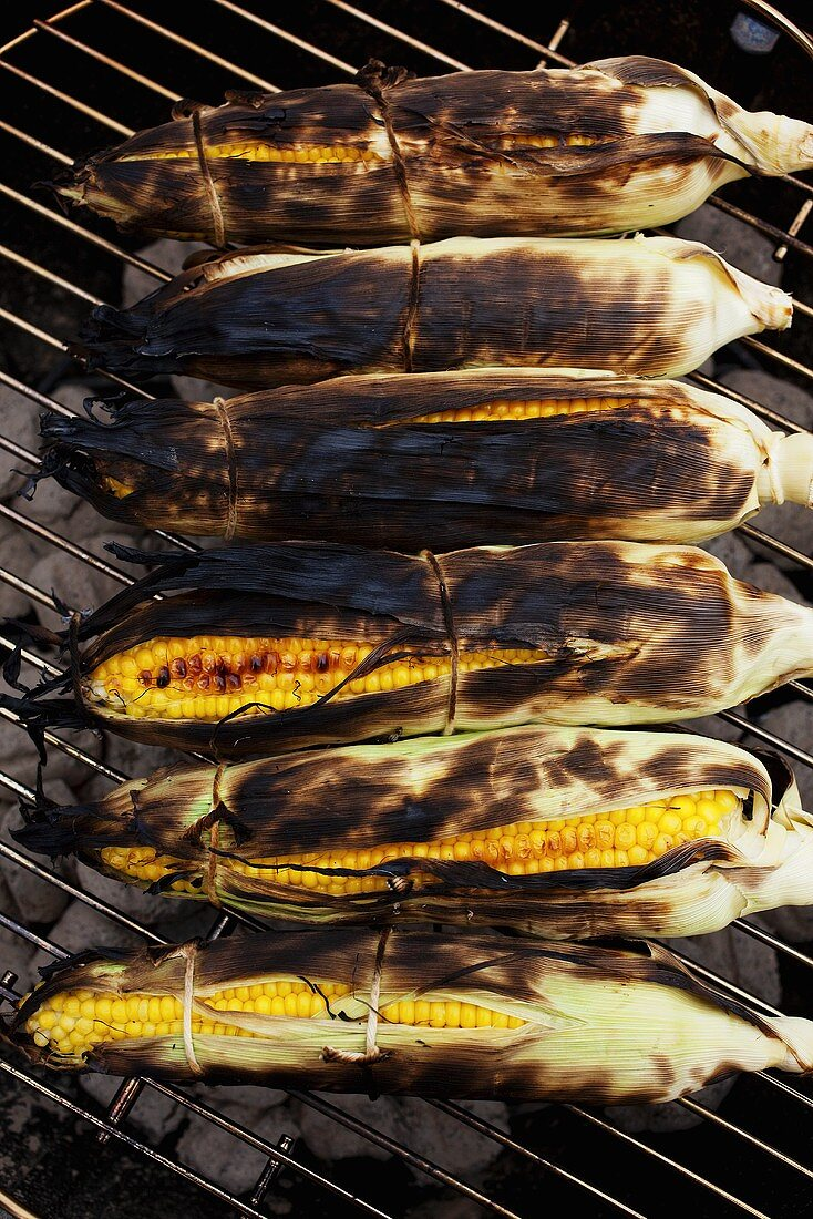 Corn on the Cob Roasting on Charcoal Grill; From Above