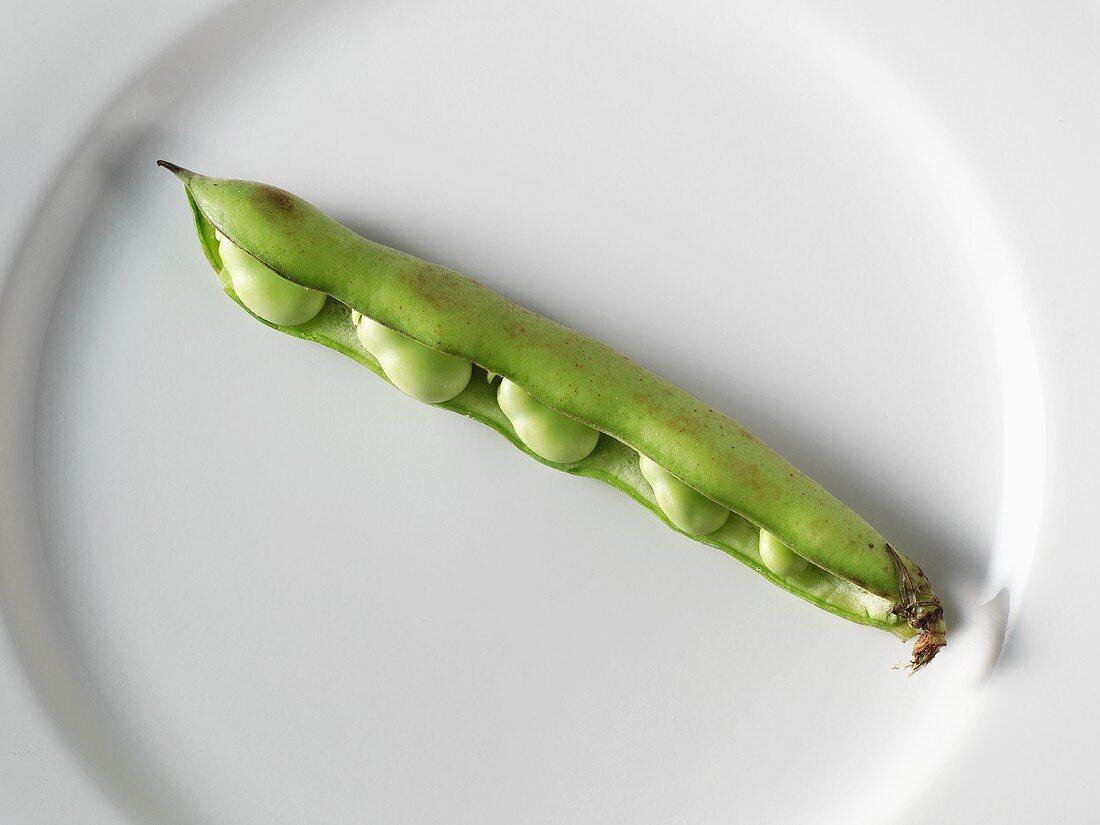 Open Lima Bean Pods; Whole Pods