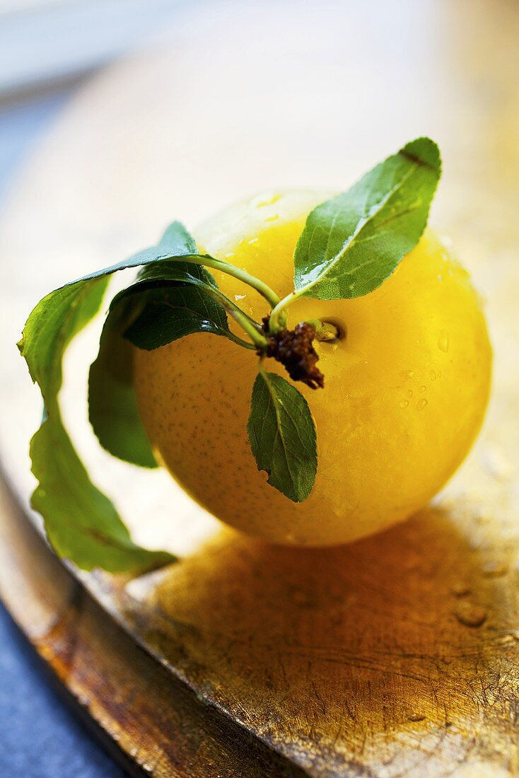 Yellow plum with stalk and leaves