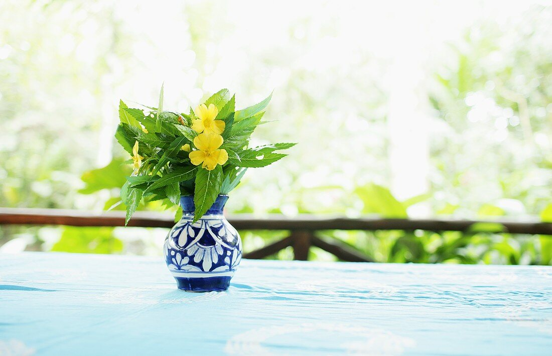 Yellow Wildflowers in a Small Blue Vase on a Table