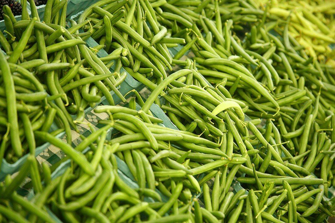 Organic Fresh Green Beans at Farmer's Market