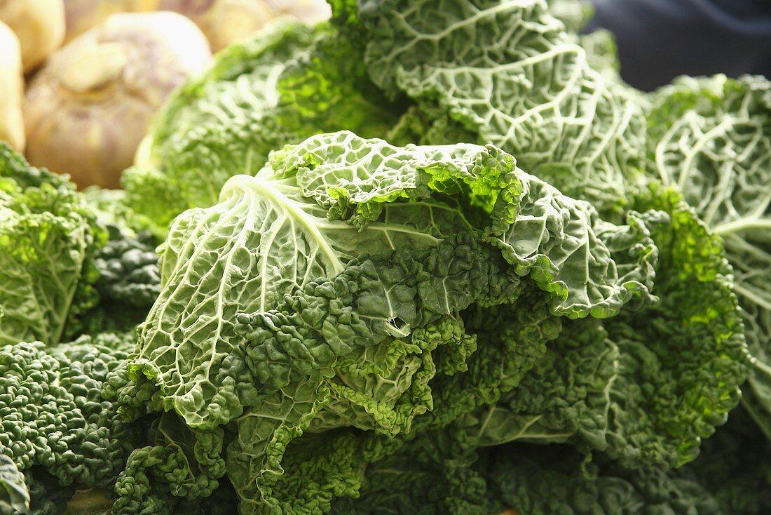 Organic Savoy Cabbage at Farmer's Market; Bantry, Ireland